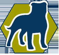 bnit-logo